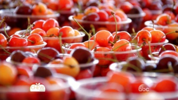 On Location: National Cherry Festival
