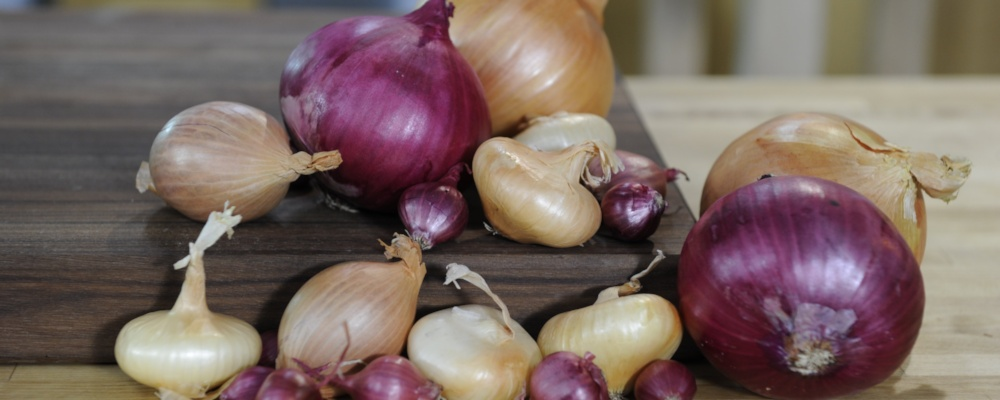 Mario Batali\'s Stuffed Onions