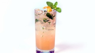 Grapefruit Mojito Mocktail