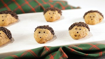Hedge Hog Pecan Shortbread Cookies