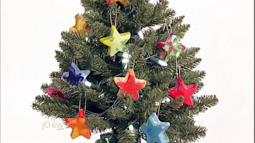 Crayon Star Ornament Craft